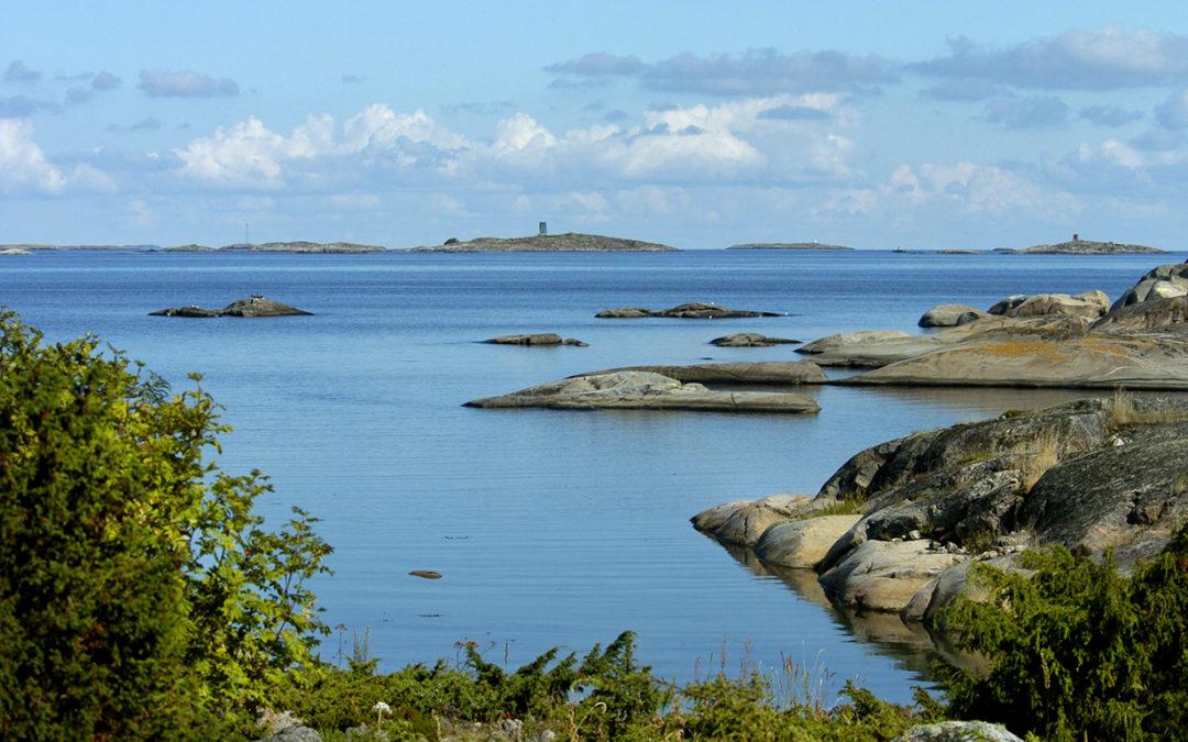 Rotarit ja Suomen ympäristökeskus yhteistyöhön sinileväseurannassa